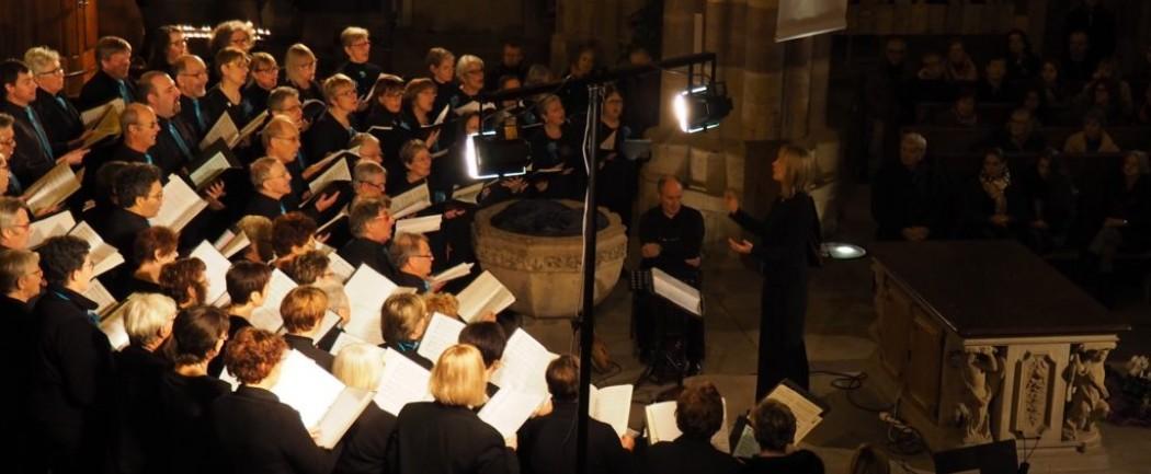 DIAPASON a chanté pour  l'ADOT au jardin des deux rives – Strasbourg